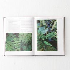 Encyclopedia of Garden Ferns in Garden UTILITY Garden Books at Terrain