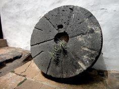 A aquel que molestare a mis pequeñuelos, más le valdría atarse una rueda de molino y . . .