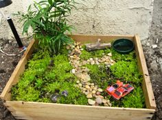 Fairy garden - outdoor play in small spaces. Great ideas on setting up nature play stations in your outdoor space.
