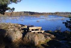 swedish nature Water, Outdoor, Gripe Water, Outdoors, The Great Outdoors, Aqua