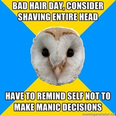 Bipolar Owl on manic hair decisions.  I've actually done this.