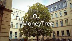 #MoneyTree. Erntefieber. Oder warum Menschen auf Bäume klettern.