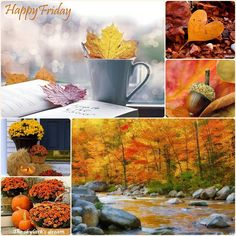 Autumn Trees, Autumn Leaves, Autumn Inspiration, Color Inspiration, Collages, Happy Friday Quotes, Hello November, Good Morning Greetings, Fall Pictures