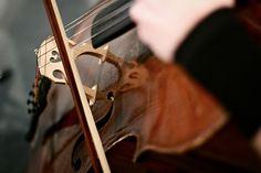 Classical Music, especially Cellos