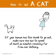 HOW TO BE A CAT? If you know, tell us here http://lastlemon.com/cat_submit/ and we'll illustrate it. Links to all our FB pages here: http://lastlemon.com/