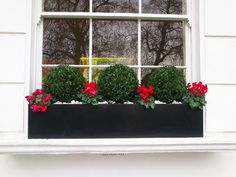 Window boxes London | Design, installation, maintenance | London Planters