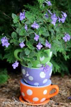 Sweet polka-dot teacups stacked up with purple flowers   21 Gorgeous Flower Planter Ideas