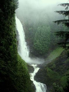 [PHOTO]  Forest Waterfall https://twib.in/l/zA9G69db7Gx  #adventure #travel #photography | https://twibble.io