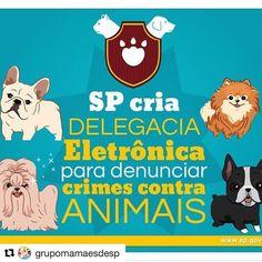 #Repost @grupomamaesdesp  Presenciou algum caso de maus-tratos a animais?  Agora você pode denunciar pela internet e de forma anônima!  #DEPA #ProteçãoAnimal  http://ift.tt/2iVPSce #dicasgrupomamaesdesp #materniarte #grupomamaesdesp