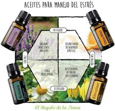 Perfume And Cologne, Oil Mix, Essential Oil Uses, Doterra Essential Oils, Diffuser Blends, Natural Oils, Aromatherapy, Herbalism, Wicca