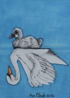 ACEO 2016 Original Pen Drawing Fairy Tale Swan The Ugly Duckling Sue Flask  SOLD