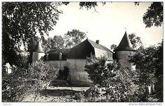 Chize chateau - Delcampe.net