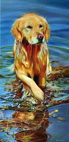 Golden Retriever Painting - Lady Of The Lake by Kelly McNeil