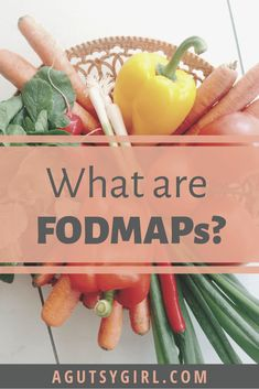 What are FODMAPs agutsygirl.com #fodmap #fodmaps #guthealth #sibo High Fodmap Foods, Vegetarian Protein, Gaps Diet, Sarah Kay, Fodmap Recipes, Gut Health, Food Lists, Natural Healing, Healthy Lifestyle