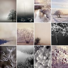 Feels like January by Sarah Gardner Photography