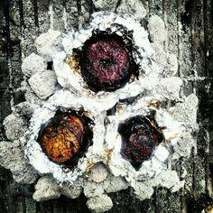Coal roasted beets