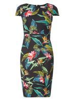 Womens Petite Black Tropical Print Scuba Dress- Black