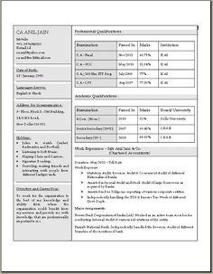 Plant Accountant Sample Resume Amazing Resume  Senior Accounting Executive  Professional Resume .