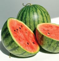 """Little Baby Flower (F1)  (Citrullus lanatus var. lanatus)   Our smallest watermelon, with great flavor and appearance.    Small, 5 1/2"""" round, avg. 2-4 lb. fruit. Bright stripe pattern on shell and dark pink flesh that is sweet and crisp with high sugar count. High-yielding plants. Avg. 3-5 fruits/plant. Avg. 12,500 seeds/lb. Packet: 30 seeds.    Plant Cycle:   (A)   Days to Maturity or Bloom:   70 {Good review on this!}"""
