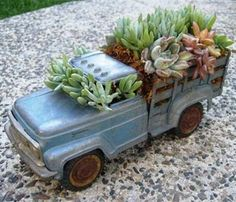 14 Fabulous Upcycled Indoor Garden Ideas