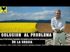 Cientifico mexicano crea invento que solucionara el problema de la sequía en el mundo - YouTube