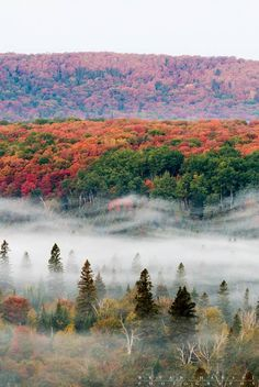 breathtaking Autumn colors viewed atop oberg mountain
