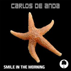 iTunes - Music - Smile in the Morning - Single by Carlos De Anda