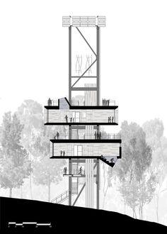 Sección-alzado. La sostenible casa del árbol por Mithun. Señala encima de la imagen para verla más grande.