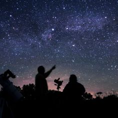 Star gazing in Georgia!! Stephen C. Foster State Park (Okefenokee Swamp) has been named the 1st international dark sky park in Georgia, star gazing will be allowed! Tag friends to go with. ✨☄️