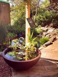 The Patio Pond feature is perfect! Instead of the normal Fountain, grab one of these guys, a few Aquatic Plants & a spitter of your choice & BAM! You can even have Fish :) Patio Pond, Diy Fountain, Aquatic Plants, Be Perfect, Gardening, Fish, Canning, Guys, Outdoor Decor