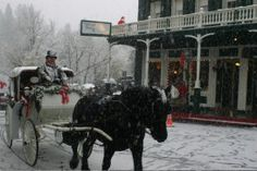 Nevada City and Grass Valley Victorian and Cornish Christmas festivals - look like a great way to cap a meandering return from Apple Hill tree farms.