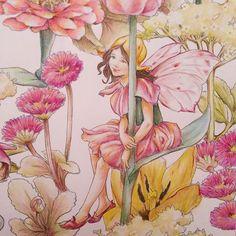 . 〔チューリップの妖精〕。 THE TULIP FAIRY. . これで見開き1つ終わりました✿*:・. . この子は羽とちょっと洋服を変えて塗りました*. 全体アップも一応、夜にpostします。 . 2016/6/20。 . #flowerfairies #シシリーメアリーバーカー #lineartbook #フラワーフェアリーズ #コロリアージュ #大人の塗り絵 #大人のぬりえ #색칠공부 #著色 #著色本 #colorpencil #coloringbooks #coloriage #coloringbook #adultcoloring #adultcoloringbook