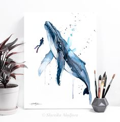 Scuba Diving with Humpback Whale watercolor painting print by image 3 Tree Watercolor Painting, Whale Painting, Watercolor Whale, Painting Prints, Bird Paintings, Watercolor Artists, Watercolor Portraits, Watercolor Landscape, Watercolor Flowers