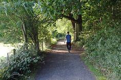 Walking in the Farnham Estate