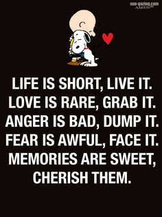 Peanuts Gang, Life Is Short, Snoopy, Memories, Funny, Fictional Characters, Memoirs, Souvenirs, Funny Parenting