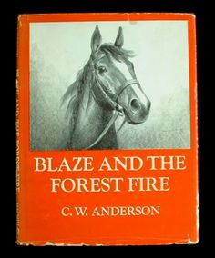Blaze and the Forest Fire was one of the best in the series by CW Anderson