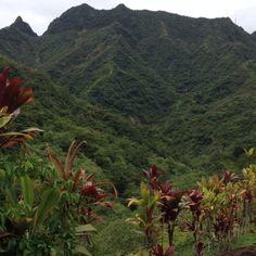 Landscapes. #tahiti #nature #elsalvador #tourism #4x4 #MountainTour #Safari