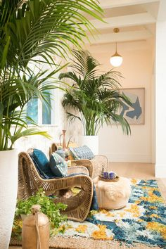 Plant Life - How To Style A Small Space, The Justina Blakeney Way - Photos