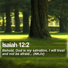 Isaiah 12:2 Behold, God is my salvation, I will trust and not be afraid... (NKJV)  #Nature #Salvation #Inspiration #Hope #Pray #BibleStudy #PhotoOfTheDay http://www.bible-sms.com/