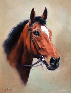 Istabraq Limited Edition Horse Racing Print by Equestrian Artist Jacqueline Stanhope Horse Drawings, Animal Drawings, Horse Portrait, Thoroughbred Horse, Equine Art, Horse Art, Gravure, Animal Paintings, Beautiful Horses