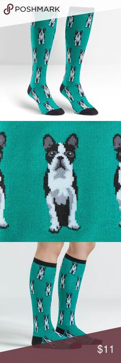 Sock it to Me Boston Terrier Knee High Sock it to Me Boston Terrier Knee High Boston loves Sox and terriers. We thought: why not combine them? This crazy all-American dog, with its little snorty nose and wiggly butt, is an all-American gentleman. Dapper yet silly and cuddly (much like these knee high socks), the Boston Terrier is a dog that you can't help but love (hey, just like these socks). 53% cotton , 45% polyester, 2% spandex. Approximately fits women's shoe 5-10. sock to me…