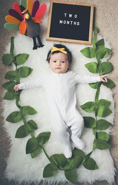 Monthly Baby Photo Fall / Fur Rug / Letterboard