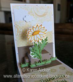Velvet Daisy Card