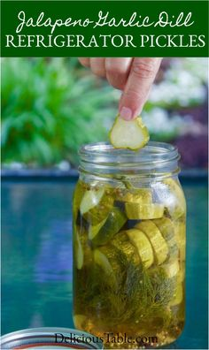 Easy Jalapeño Garlic Dill Refrigerator Pickles (no canning) are crunchy, with a spicy zing of jalapeno, the tang of vinegar, and a fresh dill taste! Spicy Pickle Recipes, Relish Recipes, Cucumber Recipes, Canning Recipes, Jalapeno Dill Pickle Recipe, Crunchy Pickle Recipe, Dill Relish Canning Recipe, Fresh Jalapeno Recipes, Yummy Recipes