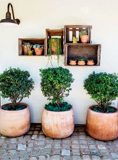Cliquez sur les liens pour lire les articles en entier     - Jolies demeures -     Joli jardin en Californie
