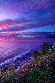""""""" Start Again At Your Beginnings """" - Wisconsin Horizons by Phil Koch"""