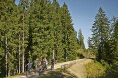 Die schönsten Radtouren im Hochschwarzwald