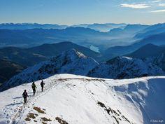 Dalla Vedetta Alta m 2627 il magnifico panorama sulla Val di Non. Da questa vetta delle Maddalene uno dei panorami più strepitosi della zona ● http://girovagandoinmontagna.com/gim/ortles-cevedale-le-maddalene-vegaia-tremenesca/(maddalene)-cima-belmonte-2459-e-vedetta-alta-m-2627/