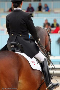 Love the saddle pad - Ogilvie! Made in Canada! The Best!