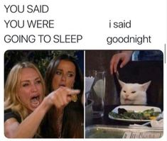"'Woman Yelling At Cat' Memes That Perfectly Showcase Strange Southern Slang - Funny memes that ""GET IT"" and want you to too. Get the latest funniest memes and keep up what is going on in the meme-o-sphere. Stupid Funny Memes, Funny Relatable Memes, Funny Posts, The Funny, Funny Quotes, Hilarious, Funny Stuff, Memes Humor, Cat Memes"